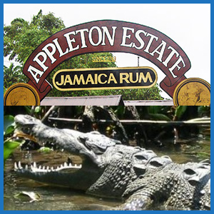 juta_negril_appleton_black_river